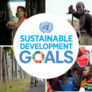 Web-button-for-SDGs-smaller-300x300